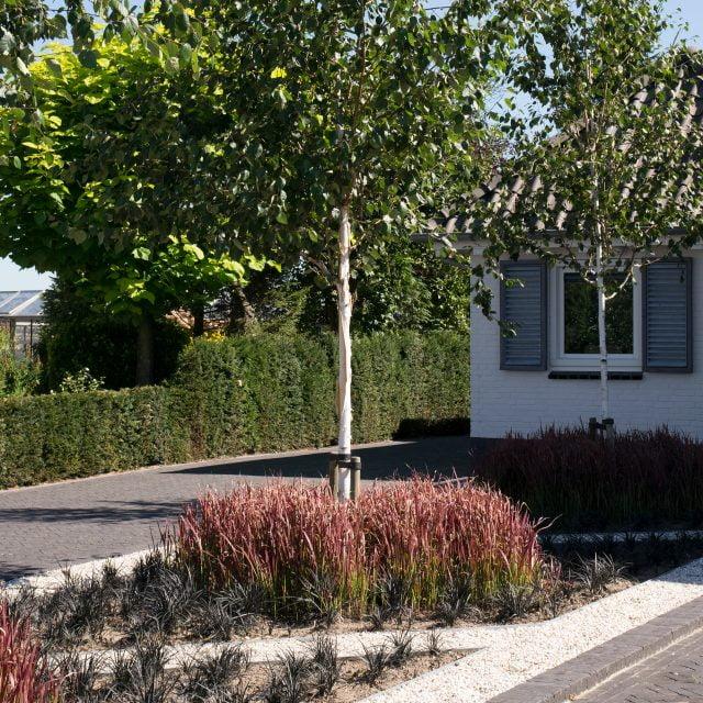 Tuinvoorbeeld: Entree beplanting