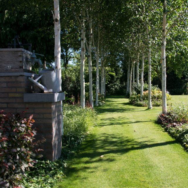 Voorbeeldtuin: Natuurlijke tuin